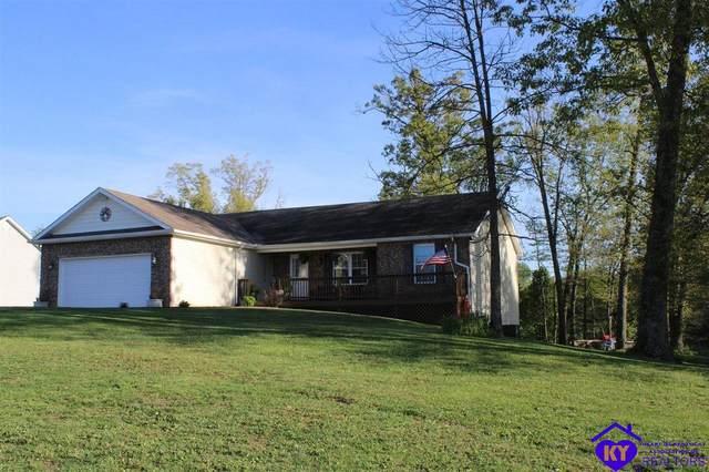 187 Prairie View Drive, VINE GROVE, KY 40175 (#10056362) :: Team Panella