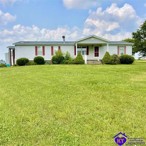 103 Shale Lane, RINEYVILLE, KY 40162 (#10057195) :: The Price Group