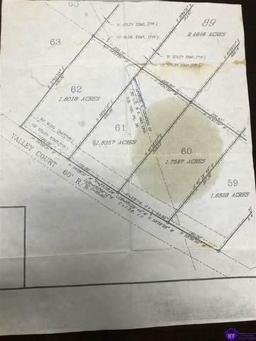 151 Valley Court, VINE GROVE, KY 40175 (#HK10057848) :: Trish Ford Real Estate Team   Keller Williams Realty