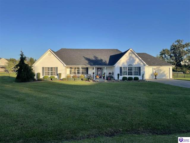 135 E Curly Ct, RINEYVILLE, KY 40162 (#HK10058566) :: Herg Group Impact