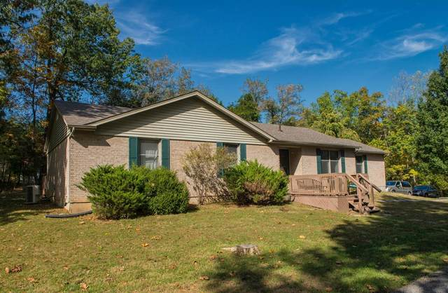 235 Long Needle Road, BRANDENBURG, KY 40108 (#10051342) :: The Price Group