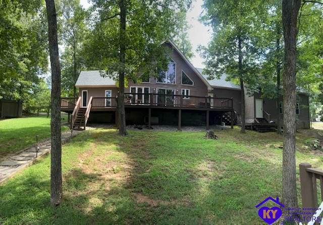 768 Spring Shores Lane, FALLS OF ROUGH, KY 40119 (#10050546) :: The Price Group