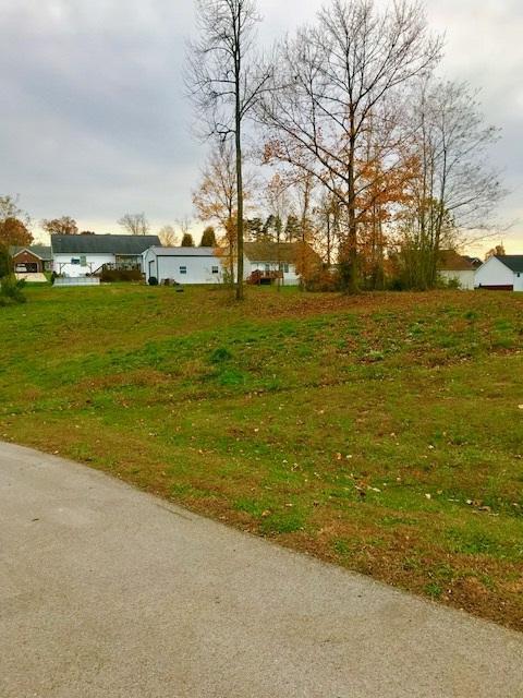 Lots 54 & 55 Rolling Ridge Court, BRANDENBURG, KY 40108 (#10041416) :: Keller Williams Louisville East