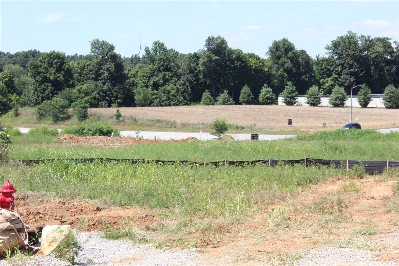 0 New Shepherdsville Road - Photo 1