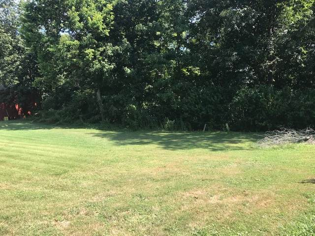 2843 Cannons Point Lane, MCDANIELS, KY 40152 (#10049447) :: The Price Group