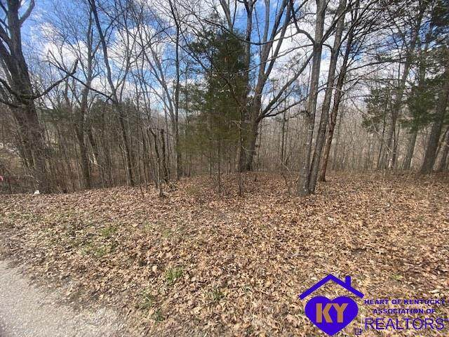 310 Tules Creek Road, WEST VIEW, KY 40178 (#10056041) :: Team Panella