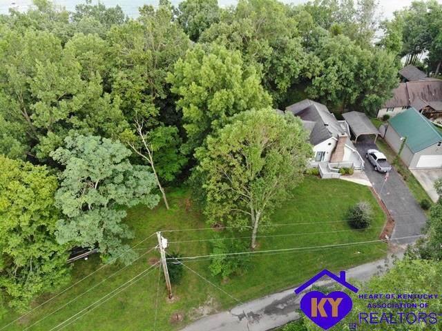 1290 Cave Heights Drive, FALLS OF ROUGH, KY 40119 (#10048728) :: Trish Ford Real Estate Team | Keller Williams Realty