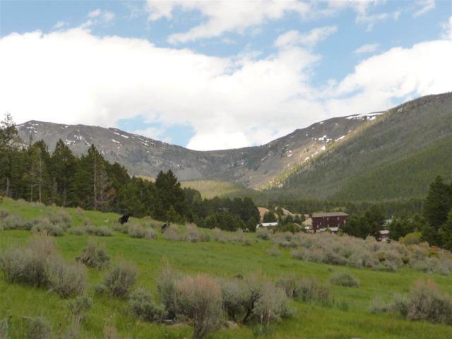 TBD Elkhorn Rd, Boulder, MT 59632 (MLS #289382) :: Andy O Realty Group