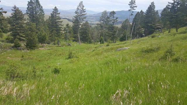 TBD Big Indian Gulch Rd Tract 4, Montana City, MT 59634 (MLS #298762) :: Andy O Realty Group