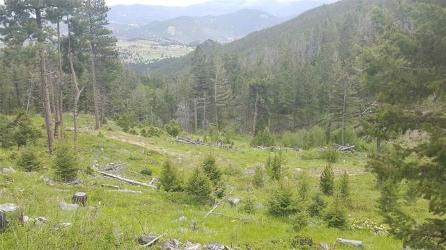 TBD Big Indian Gulch Gold Ridge Lode, Montana City, MT 59634 (MLS #298765) :: Andy O Realty Group