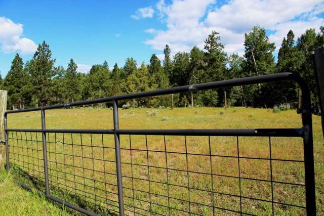 TBD 1B-6 Blackburn, Lincoln, MT 59639 (MLS #298931) :: Andy O Realty Group