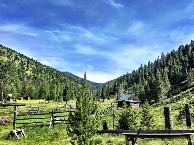 TBD Alice Creek, Lincoln, MT 59639 (MLS #299123) :: Andy O Realty Group