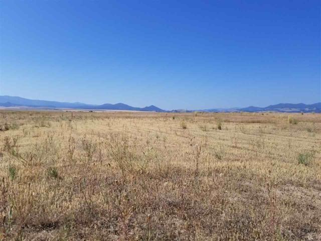 4259 St John Rd, East Helena, MT 59635 (MLS #299196) :: Andy O Realty Group