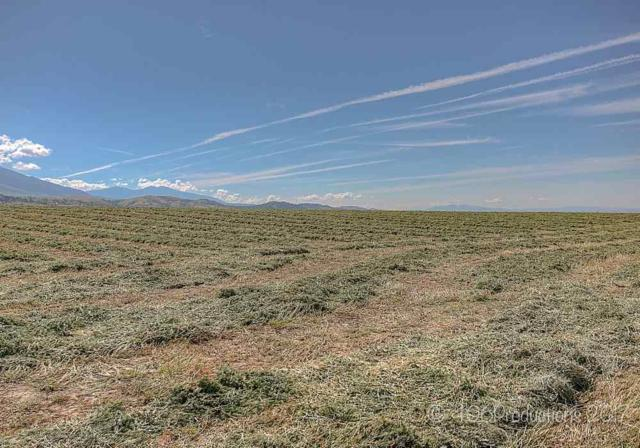 NHN Mt Hwy 284, Townsend, MT 59644 (MLS #299796) :: Andy O Realty Group