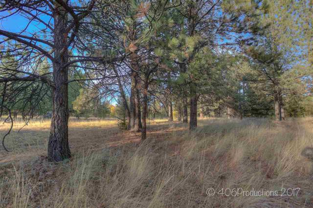 2 Moose Drive, Montana City, MT 59634 (MLS #299923) :: Andy O Realty Group