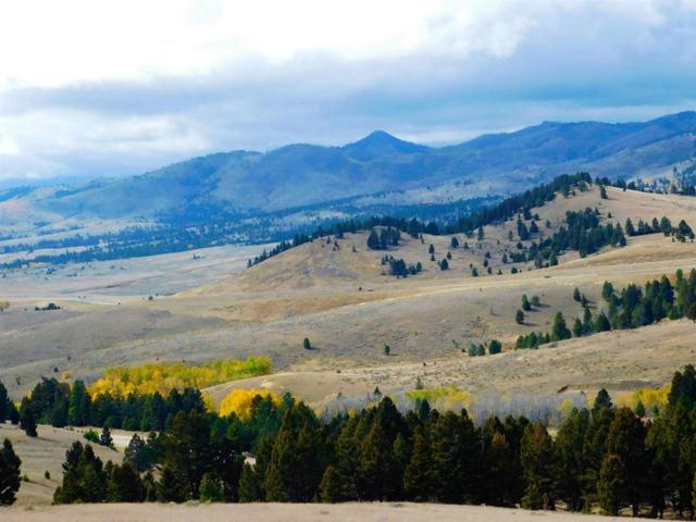 Lot 113 Aspen Valley Ranches, Boulder, MT 59632 (MLS #299943) :: Andy O Realty Group