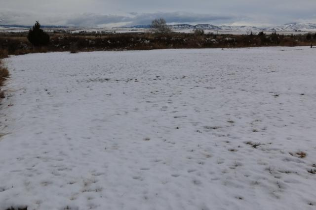 TBD South Oak Street, Townsend, MT 59644 (MLS #300136) :: Andy O Realty Group