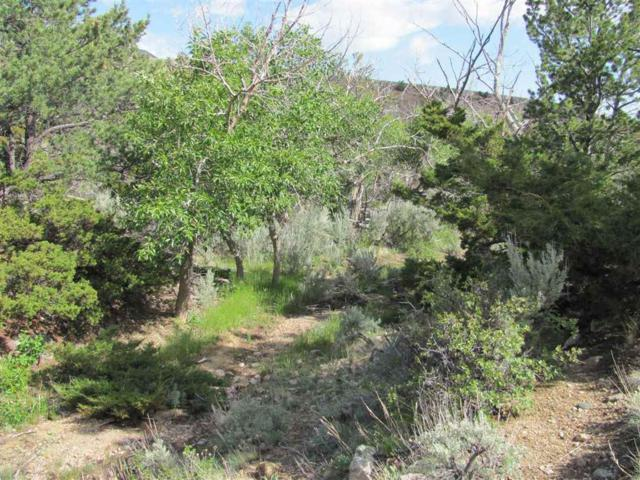 TBD Ruby Creek Rd, Other, MT 59008 (MLS #300252) :: Andy O Realty Group