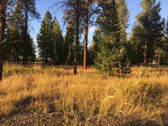NHN Airport Way Road, Libby, Other, MT 59923 (MLS #300259) :: Andy O Realty Group
