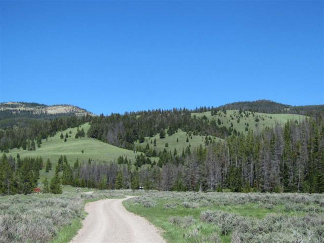 TBD Alice Creek, Lincoln, MT 59639 (MLS #300359) :: Andy O Realty Group