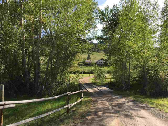 1576 Hwy 434, Wolf Creek, MT 59648 (MLS #300714) :: Andy O Realty Group