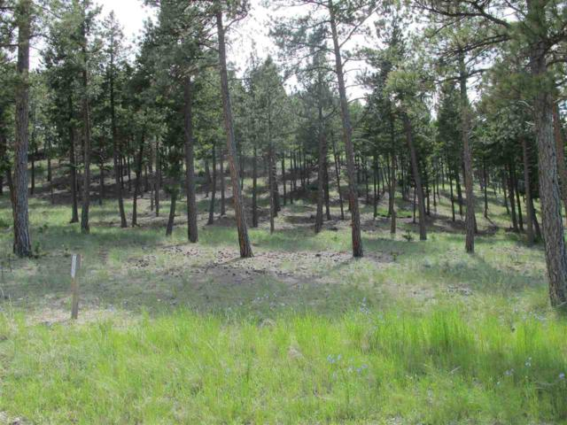 23 Crossfire Dr, Clancy, MT 59634 (MLS #302002) :: Andy O Realty Group