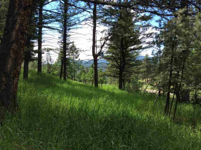 58 Hanging Tree Gulch, Clancy, MT 59634 (MLS #302095) :: Andy O Realty Group