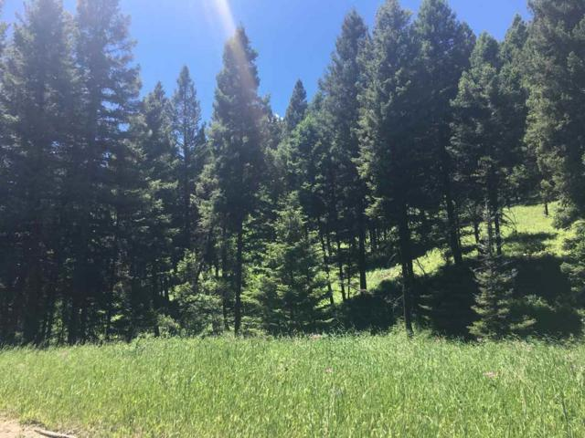 Mulkey Gulch, Drummond, MT 59832 (MLS #302276) :: Andy O Realty Group