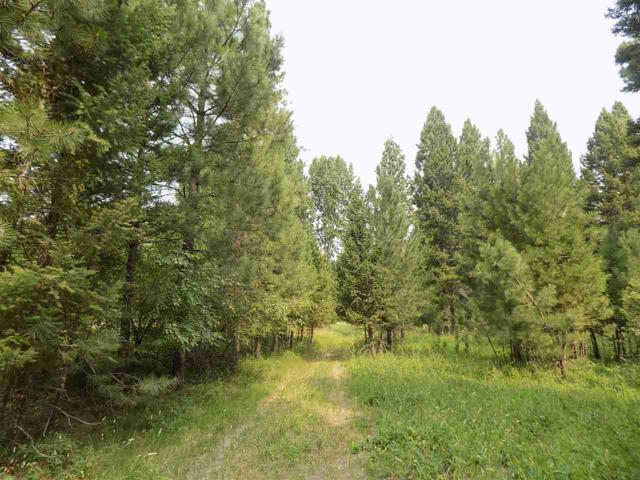 3917 4X4 Rd, Lincoln, MT 59639 (MLS #302701) :: Andy O Realty Group