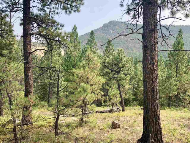 TBD Allen Gulch Road, Wolf Creek, MT 59648 (MLS #302748) :: Andy O Realty Group