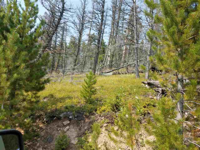 TBD Allen Gulch Rd, Wolf Creek, MT 59648 (MLS #302784) :: Andy O Realty Group