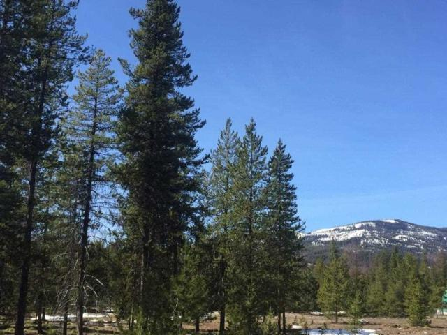 NHN Stag Ln, Seeley Lake, MT 59868 (MLS #303017) :: Andy O Realty Group