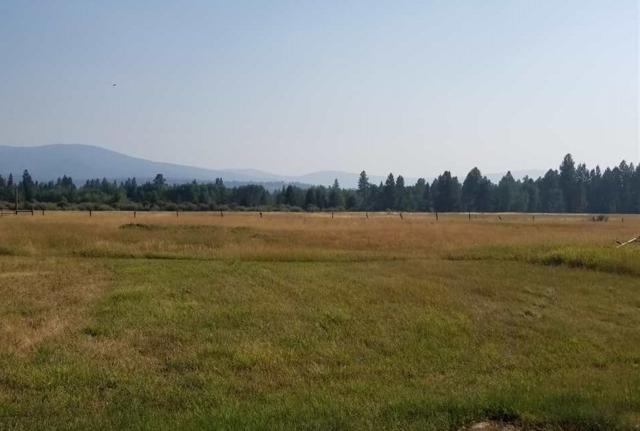 TBD Meadow Street, Lincoln, MT 59639 (MLS #299677) :: Andy O Realty Group