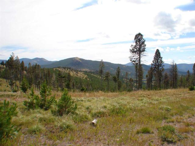 280 Acres First Gulch, Lincoln, MT 59639 (MLS #302761) :: Andy O Realty Group