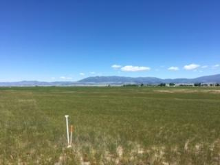 Lot 5 Fritsche Lane, Townsend, MT 59644 (MLS #299149) :: Andy O Realty Group