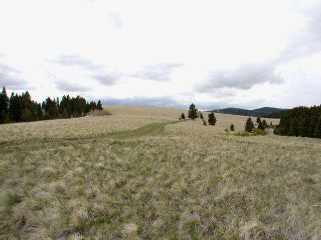 Spring Creek Ranch - B.L.M. 50.20 Ac., Helena, MT 59601 (MLS #300654) :: Andy O Realty Group