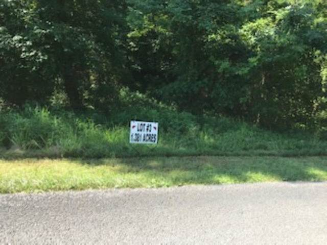 LOT 3 Blueberry Hills, Sturgis, KY 42459 (MLS #20200334) :: The Harris Jarboe Group