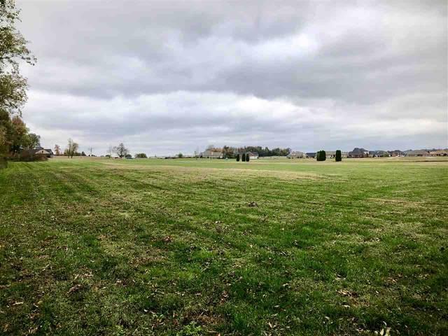 555 Crane Hill Trace, Henderson, KY 42420 (MLS #20200450) :: The Harris Jarboe Group