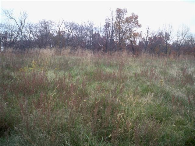 00 Blueberry Hill Lot #35, Sturgis, KY 42459 (MLS #2015440) :: The Harris Jarboe Group