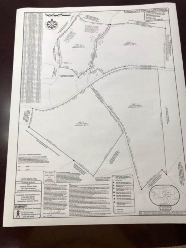 Bucknersville Rd, Greensburg, KY 42743 (MLS #20200246) :: The Harris Jarboe Group