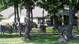 Lot 218 Safari Shores - Photo 10