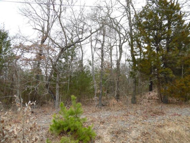 L 20-21 Hickory Hills Drive, MURCHISON, TX 75778 (MLS #79691) :: Steve Grant Real Estate