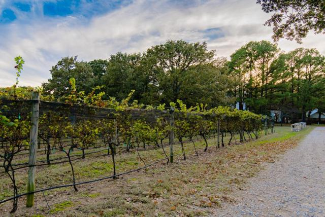 119 Diamond Oaks Drive, MABANK, TX 75156 (MLS #83564) :: Steve Grant Real Estate