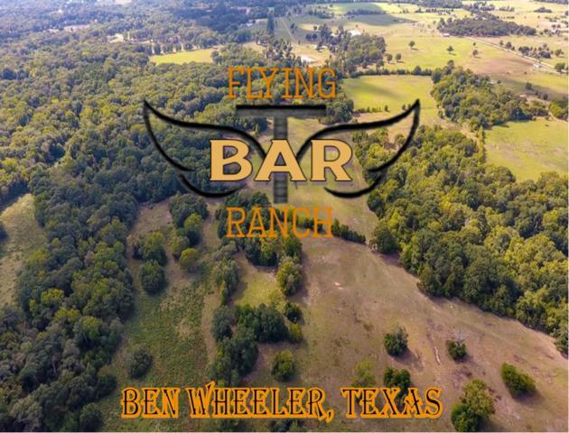 2203 Fm 858, BEN WHEELER, TX 75754 (MLS #84960) :: Steve Grant Real Estate