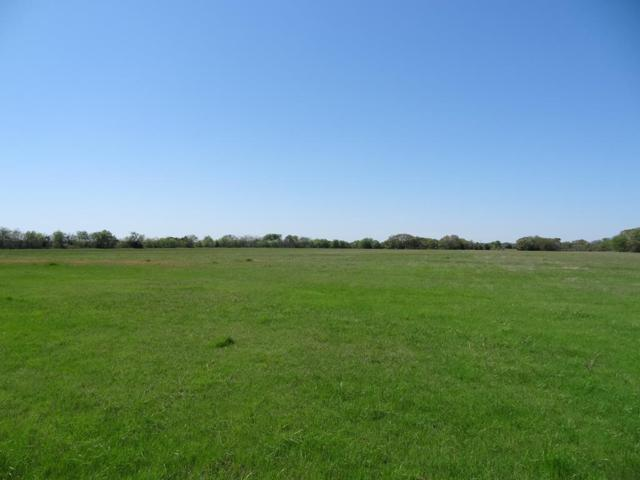 LOT 4 Vzcr 3815, WILLS POINT, TX 75169 (MLS #85039) :: Steve Grant Real Estate