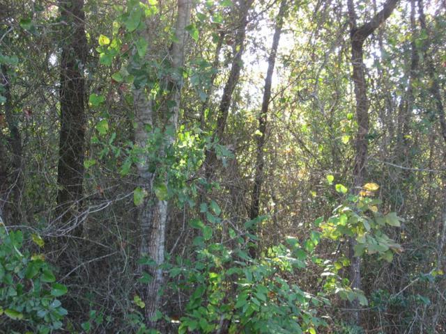 710 Westwood Drive, CHANDLER, TX 75758 (MLS #86212) :: Steve Grant Real Estate
