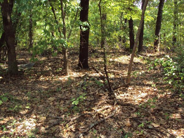 000 Timber Grove, MURCHISON, TX 75778 (MLS #86433) :: Steve Grant Real Estate