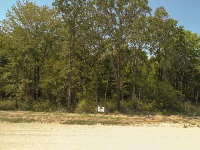 102 Oakmont Dr, MABANK, TX 75147 (MLS #86543) :: Steve Grant Real Estate