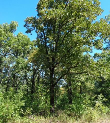 00 Nina St, MABANK, TX 75156 (MLS #86550) :: Steve Grant Real Estate