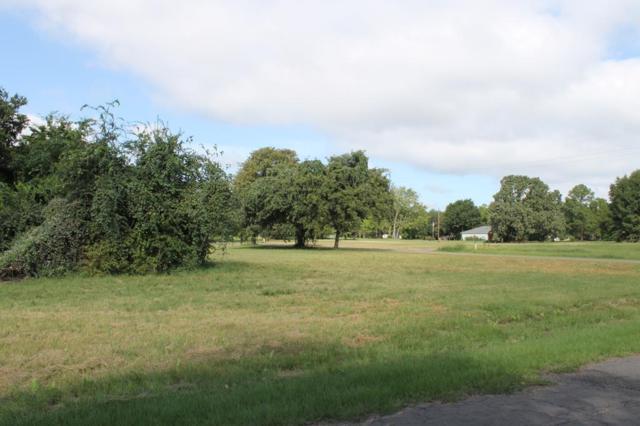 0 Cedar Bend, TRINIDAD, TX 75163 (MLS #86579) :: Steve Grant Real Estate